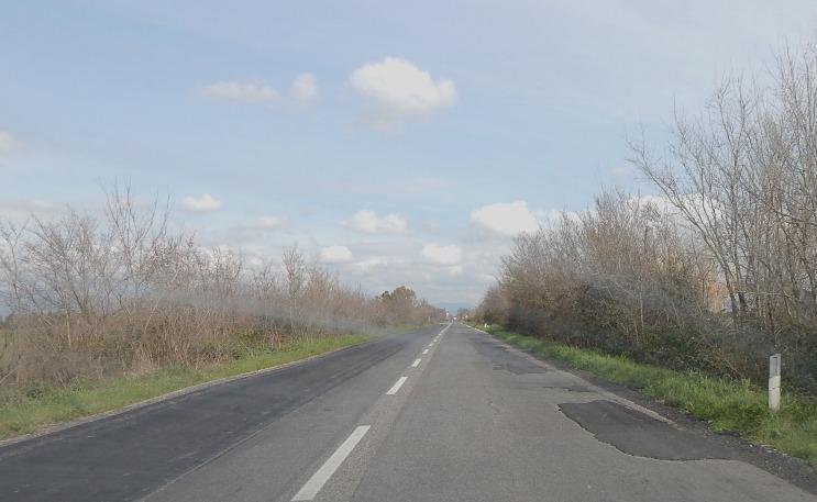 strada grazzz