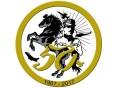logo_50_9stormo_800px