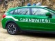 Carabinieri-Forestale-auto