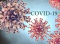 coronavirus-covid19-Copia